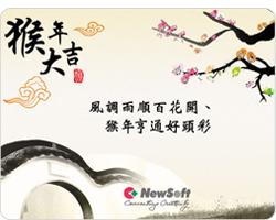 NewSoft恭祝您新年快樂